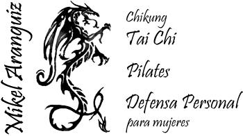 Mikel-Aranguiz-Chikung